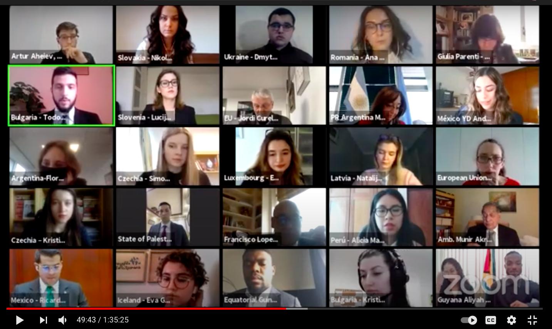 UN Youth Delegates